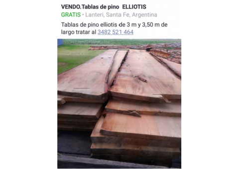 Vendo tablas de pino elliotis