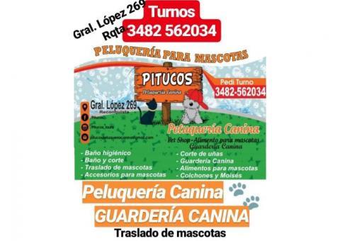 Peluquería Canina - Guardería Canina - Alimentos para mascotas - Accesorios