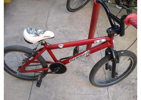 Bicicleta mammoth rodado 20 (muy buen estado)