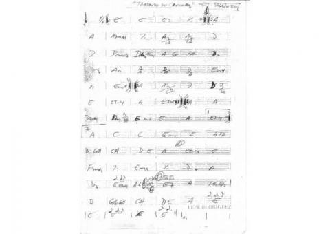 IDEAL PARA MUSICOS PROFESIONALES